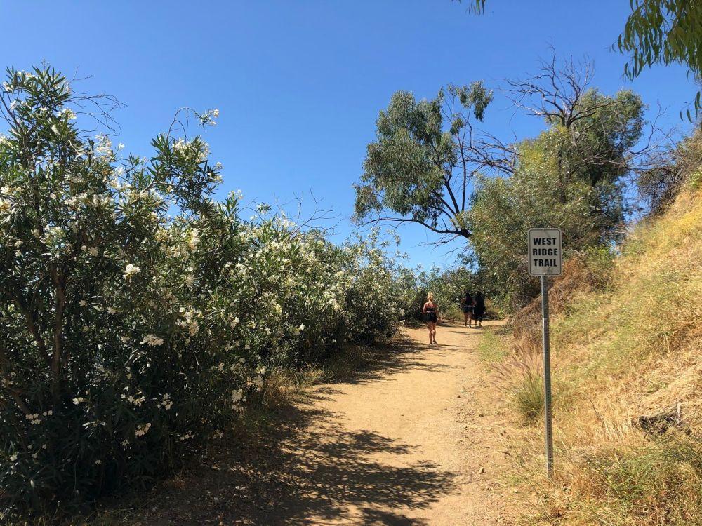 Runyon Canyon 31232134West Ridge Trail