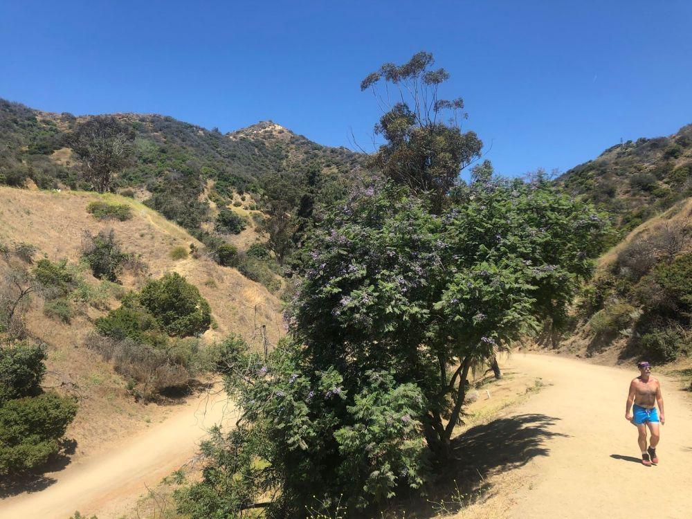 Runyon Canyon4444444 West Ridge Trail